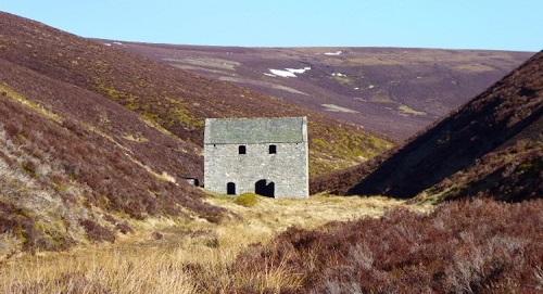 wild-landscape-cairngorm_med_hr