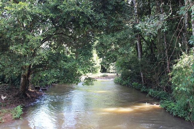 Rivière près de Katieng